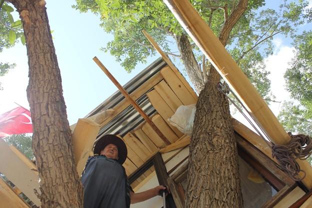 50 yıl önce diktiği ağaca oda kondurdu!