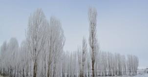 Bayburt'tan köy manzaraları...