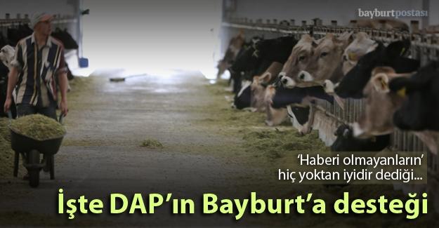 İşte DAP'ın Bayburt'a desteği