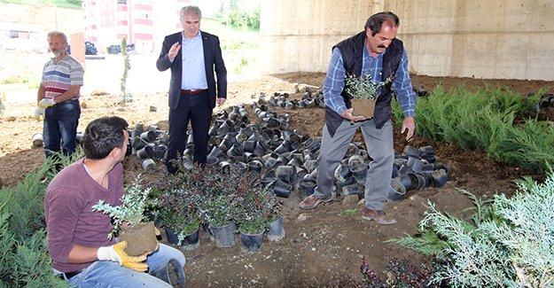 Bayburt Belediyesi, çalışmalara hız verdi
