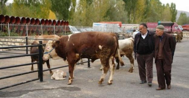 Hayvan pazarı tedbir amaçlı kapatıldı