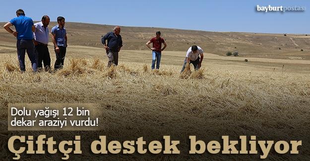 Dolu yağışı 12 bin dekar araziyi vurdu!