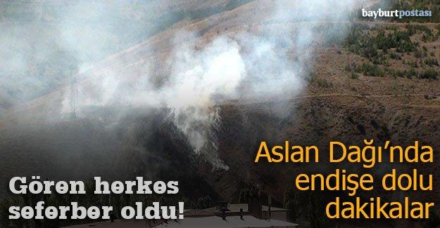 Aslan Dağı'nda çıkan yangın korkuttu