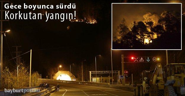 Sürmene'deki orman yangını söndürüldü