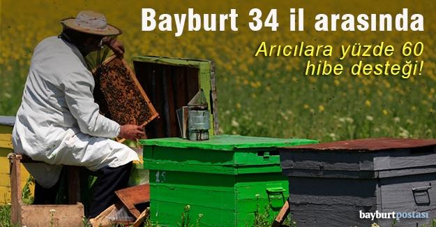 Arıcılara yüzde 60 hibe desteği