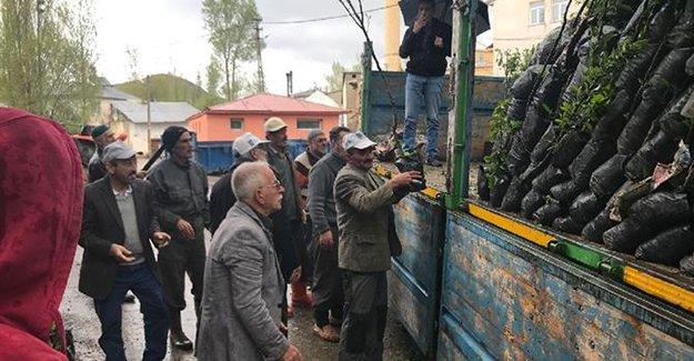 20 bin meyve fidanı dağıtıldı