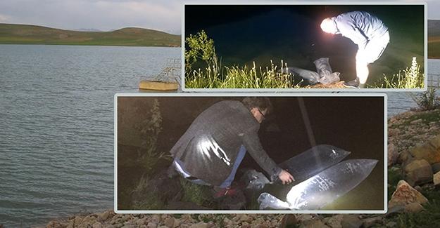 Bayburt'taki göletlere 40 bin balık bırakıldı