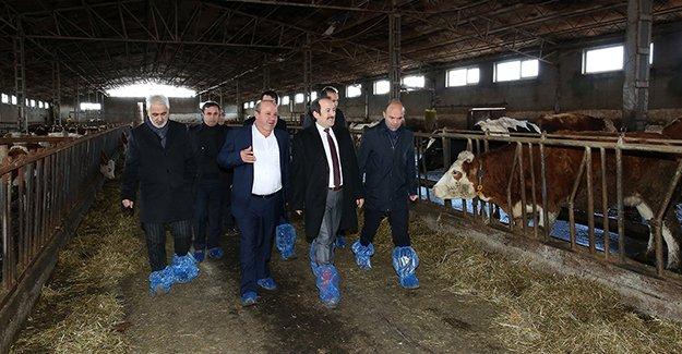 Vali Pehlivan Beşpınar'daki işletmeleri ziyaret etti