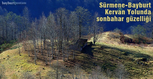 Tarihi Sürmene-Bayburt kervan yolunda sonbahar güzelliği