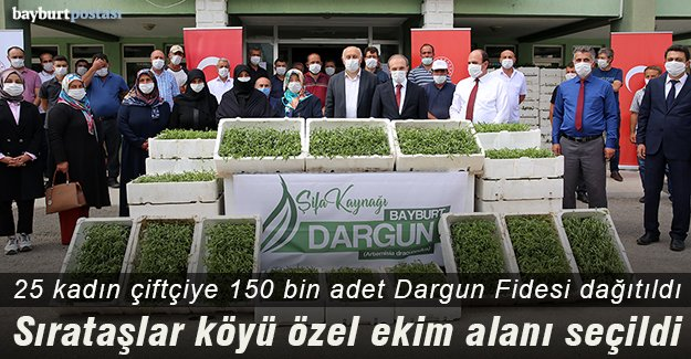 Bayburt'ta 25 kadın çiftçiye 150 bin Dargun Fidesi dağıtıldı