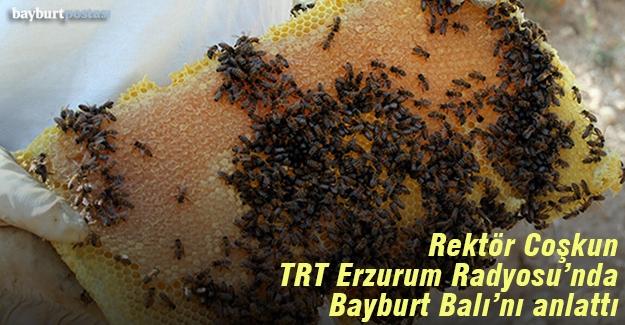 Coşkun, TRT Erzurum Radyosu'nda Bayburt Balı'nı anlattı
