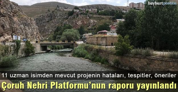 Çoruh Nehri Platformu'nun raporu yayınlandı