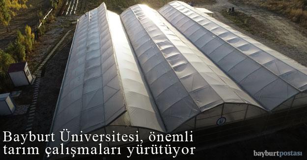 Bayburt Üniversitesi, önemli tarım çalışmaları yürütüyor
