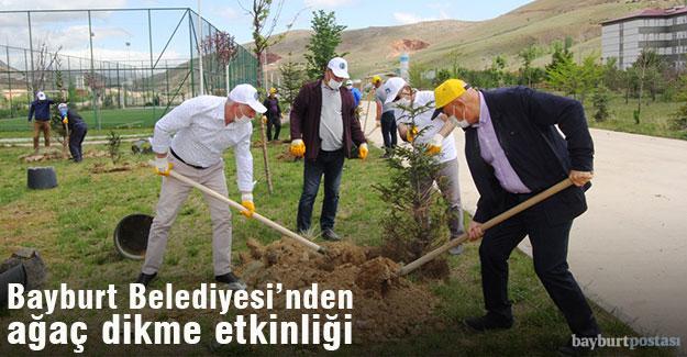 Belediye personelinden ağaç dikme etkinliği