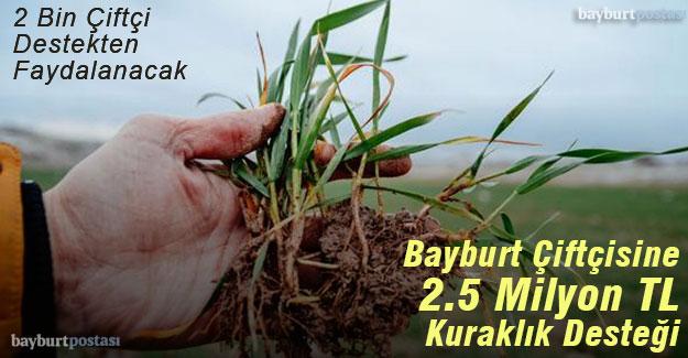 Bayburt çiftçisine kuraklık desteği 2 Milyon 500 Bin TL