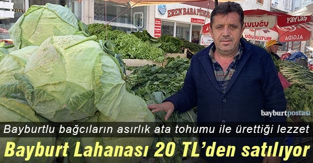 Asırlık ata tohumu ile üretilen 'Bayburt Lahanası' 20 TL'den satılıyor!