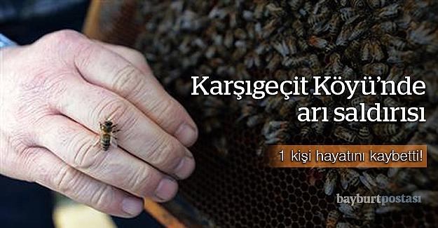 Arıların saldırısına uğrayan kişi öldü