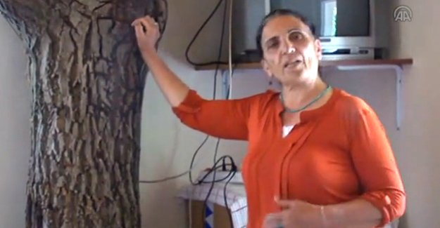 Evinde ceviz ağacıyla yaşıyor