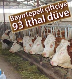 Bayırtepe'li çiftçiye DAP'tan destek