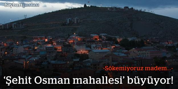 Şehit Osman'a yeni yazlık evler geliyor