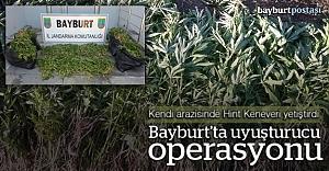 Bayburt'ta 'Hint Keneviri' operasyonu