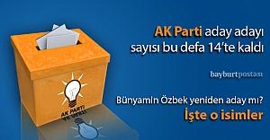 AK Parti#039;de 14 isim yarışacak
