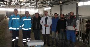 Bayırtepe'li çiftçiye DAP'tan...
