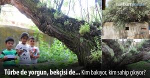 Sultan Fahriye ve ebedi bekçisi İğde Ağacı