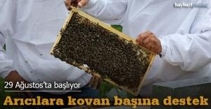 Organik arıcılara kovan başına destek