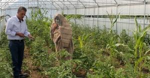 Örnek sera ve bahçeler kuruldu