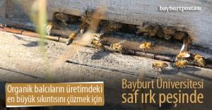"""Bayburt Üniversitesi """"saf ırk"""" peşinde"""