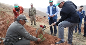 """Ustaoğlu: """"Ağaçlandırma projeleri artacak"""""""