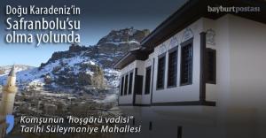 """""""Süleymaniye, Doğu Karadeniz'in Safranbolu'su olacak"""""""