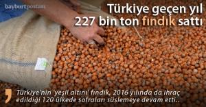 Türkiye geçen yıl 227 bin ton fındık sattı