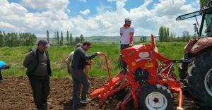 Bayburt'ta Organik Kuru Fasulye Yetiştiriciliği Projesi