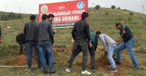 Ülkücülerden 'Başbuğ Türkeş Hatıra Ormanı'