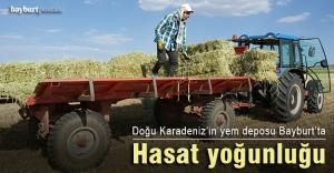 Bayburt'ta hasat yoğunluğu