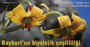 Bayburt'un biyolojik çeşitliliği