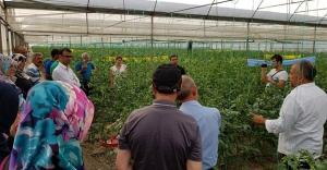 Bayburtlu seracılara Antalya'da örnek uygulama eğitimi
