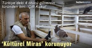"""Asırlardır """"Türk fısıldayıcısı""""nın ötüşünü dinliyorlar"""