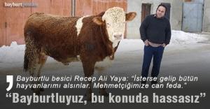 Bayburtlu besici Yaya#039;dan Mehmetçik...