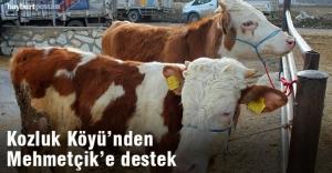 Kozluk Köyü'nden Mehmetçik Vakfı'na destek