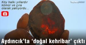 Aydıncık'ta kehribar ve vişne mermeri rezervi tespit edildi