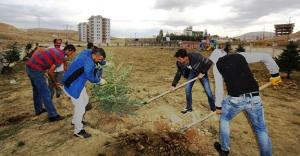 Çocuk parkları ağaçlandırılıyor