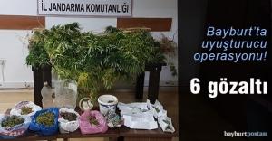 Jandarmadan uyuşturucu operasyonu:...