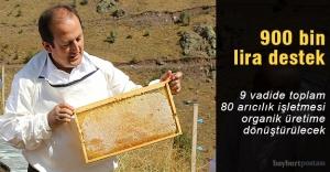 Organik bal üretimine 900 bin lira destek