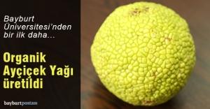 Bayburt Üniversitesi 'Organik Ayçiçeği Yağı' ürettti