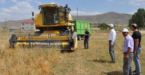 Kaymakam Coşkun, mercimek hasadı yapan çiftçilerle görüştü