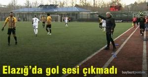 Elazığ'da gol sesi çıkmadı