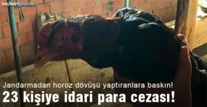 Horoz dövüştüren 23 kişiye idari...
